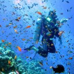 Scuba Diving Holidays Unique And Interesting