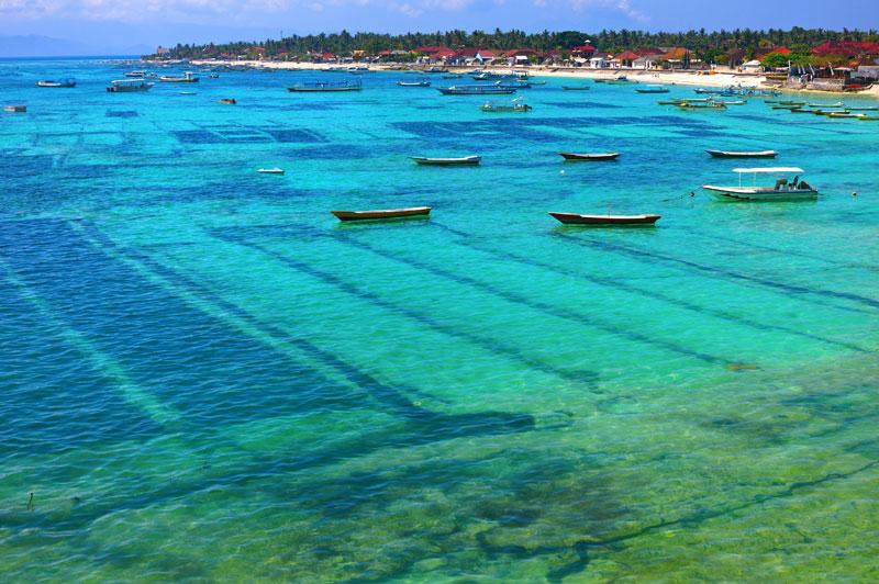 A Rich and Varied Sri Lanka Island