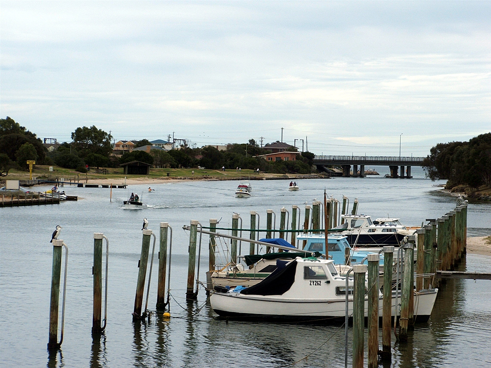 Targeting Salt Water Species From Coastal Inlets, Bays and Beaches