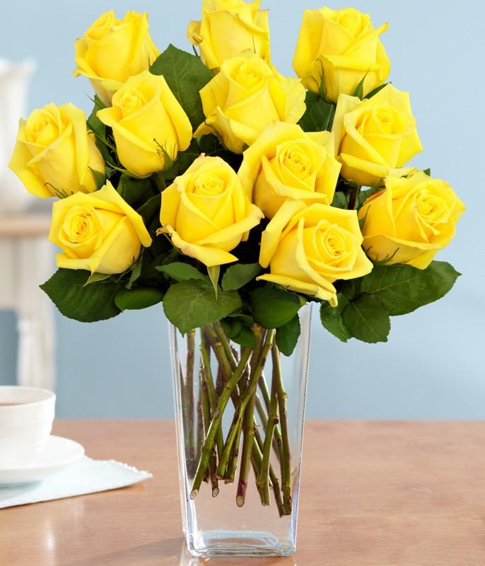 vivacious-yellow-rose