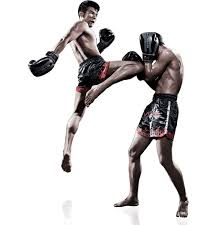 Joining A Muay Thai Camp and Holiday In Thailand - A Good Idea