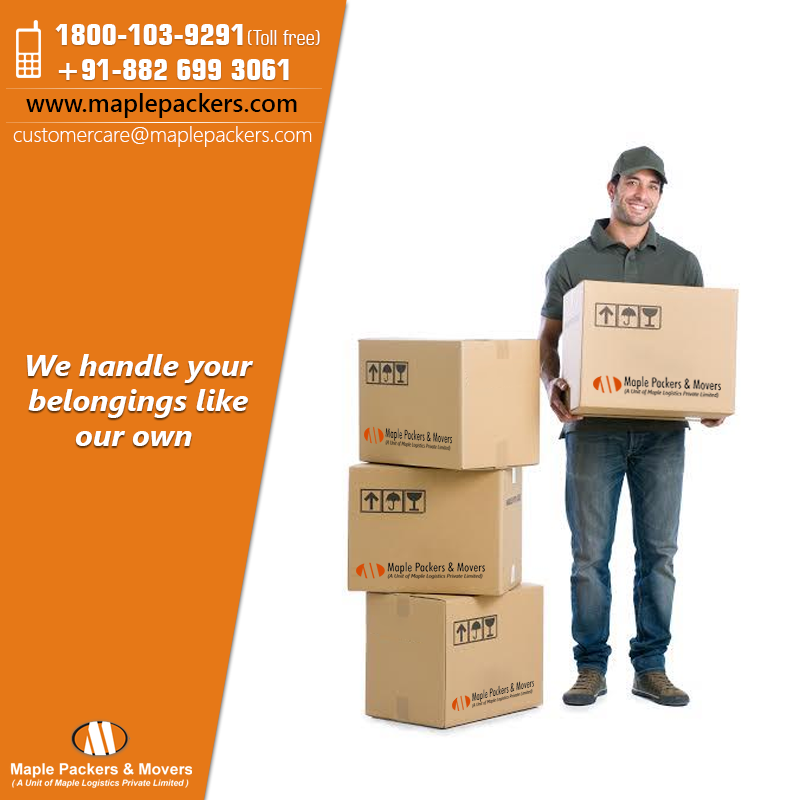 The Genuine Need Of Packers and Movers In Delhi