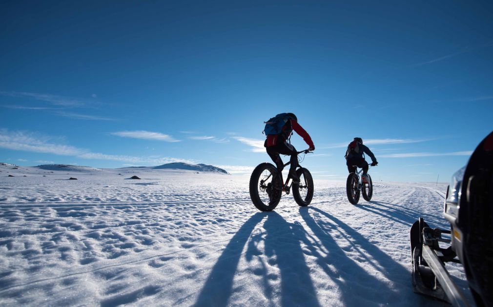 A Modern Cycling Holiday: Exercise, Adventure, and Cultural Enrichment